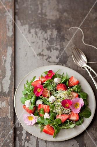 Purslane,flower,strawberry,mini goat's cheese and sprout salad