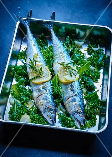Baked mackerels with Kale cabbage and lemon