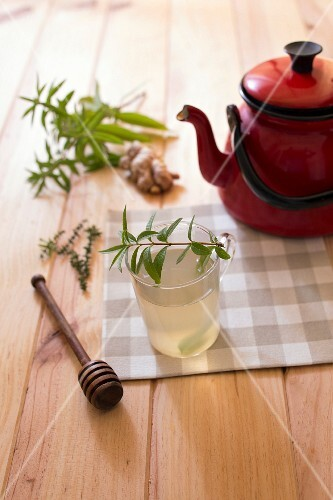 Anti-cold toddy