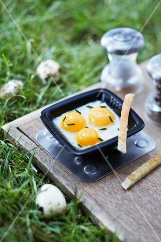 Quail's eggs in a baking tin on a wooden board on the grass