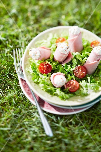 Boiled ham and cream cheese rolls with mixed salad in the grass outdoors