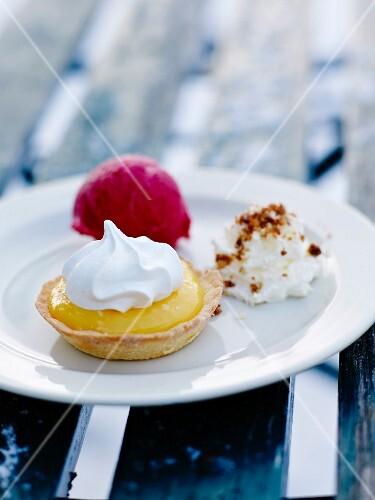 Gourmand plate :lemon meringue pie,raspberry sorbet and meringue