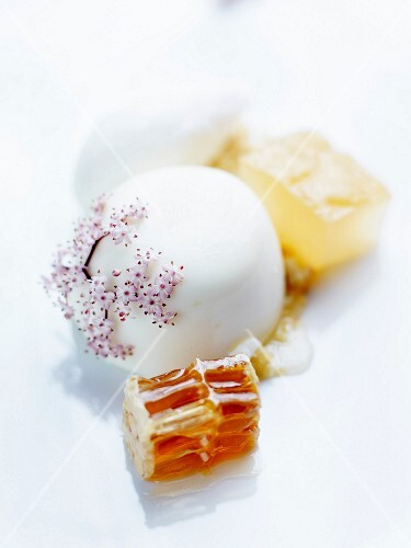Almond-flavored panna cotta with pink elderberry flowers,honeycomb and royal jelly