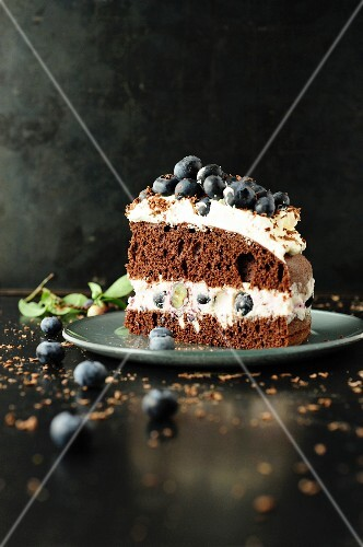 Slice of chocolate and blueberry cake