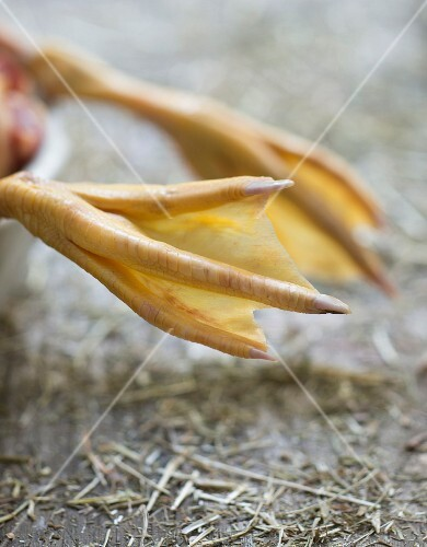 Poulard hen's foot