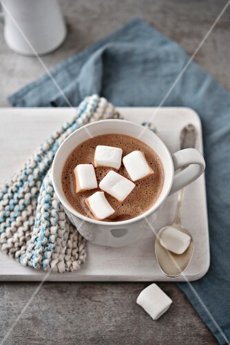 A cup of hot chocolate with marshmallows