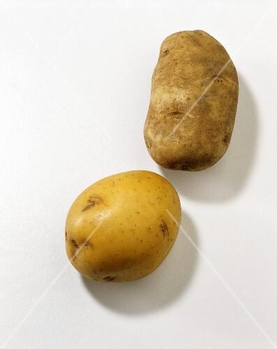 Yukon Gold Potato and Russet Potato