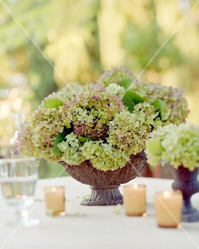 tischdeko mit hortensien und kerzen aussen bild kaufen 658605 stockfood. Black Bedroom Furniture Sets. Home Design Ideas
