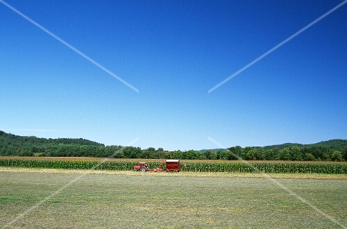 Tractor in a Vermont Corn Field