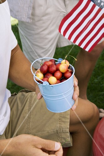 Man Eating Cherries From a Small Pail