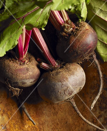 Fresh Picked Beets with Greens