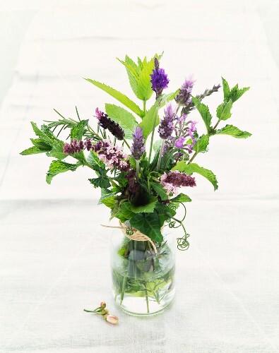 Fresh Herb Bouquet in a Vase