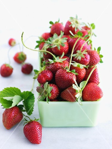 Organic Strawberries with Stems in a Dish
