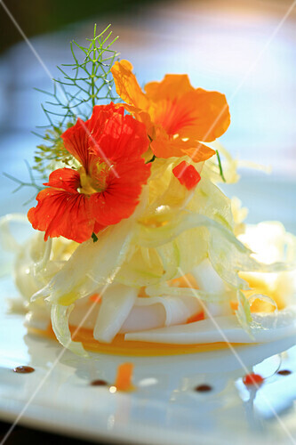 France, Vaucluse, Lourmarin, yellow pepper in transparent jelly, sepias salad with hot chili sauce and fennel, granada vinagar